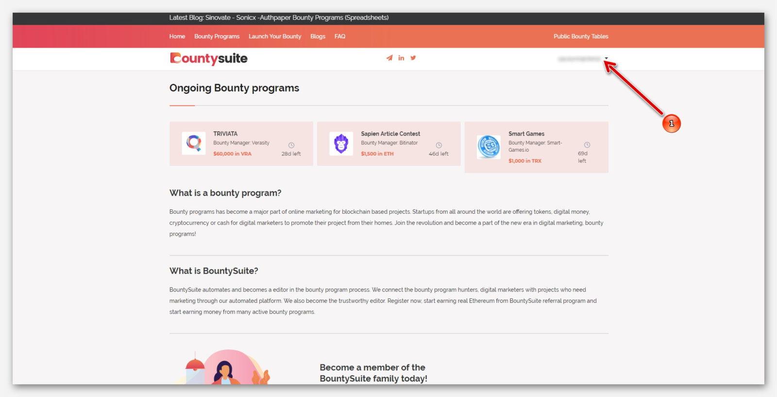 Настройки профиля, на платформе BountySuite