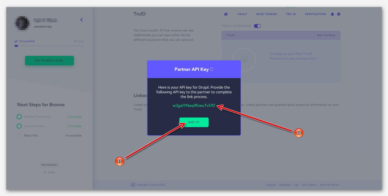 Готовый API-ключ, для соединения с партнёром Dropil, в компании Truwho