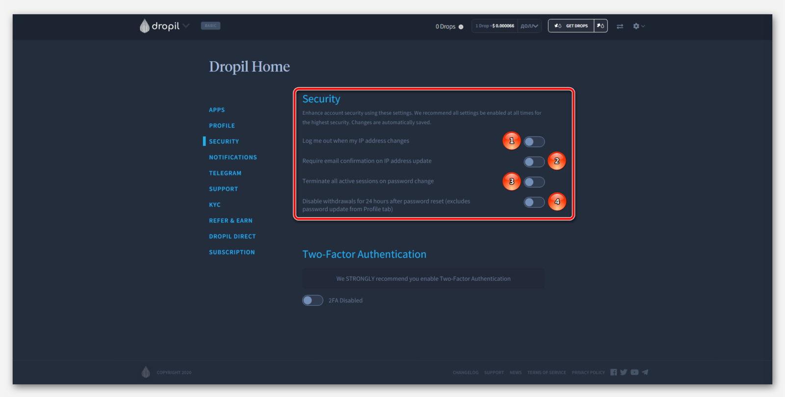 Общая безопасность в проекте Dropil