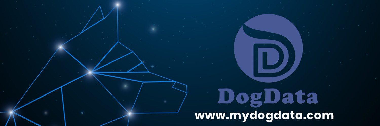 Airdrop ➔ DogData (40 токенов ETHBN – $3.2)